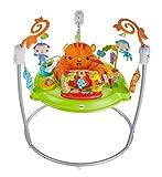 Mattel Fisher-Price CHM91 Spielspaß Rainforest Jumperoo