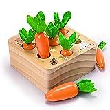 YGJT Montessori Spielzeug ab 1 Jahr | Kinder Motorikspielzeug für 12 Monate Jungen und Mädchen | Baby Holzspielzeug Karotten Ernete Puzzle | Geburtstag Neues Jahr Weihnachten Geschenk für Kleinkind