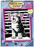Ravensburger Malen nach Zahlen 28431 - Singing Cat - Für Erwachsene und Kinder ab 12 Jahren, Yellow