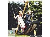Kleine Mehrkindschaukel STANDARD silber/blau für 2 Kinder,...