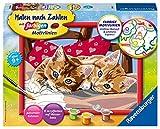 Ravensburger Malen nach Zahlen 28342 - Zwei Schmusekätzchen - Für Kinder ab 9 Jahren